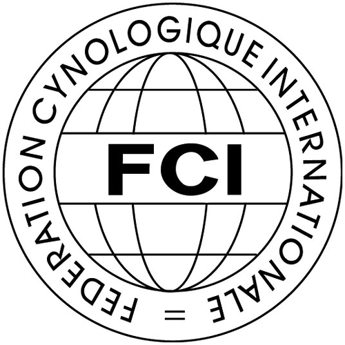 FCI_Footer_Logo